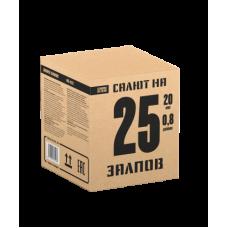 Салют САЛЮТ НА 25 ЗАЛПОВ